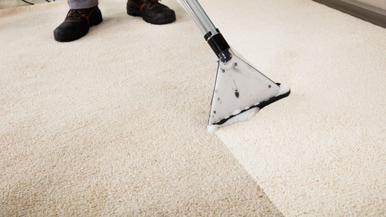 How to deep clean your carpets